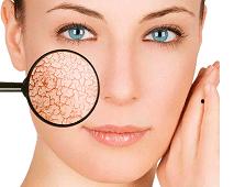 проблемы с кожей лица причины и лечение
