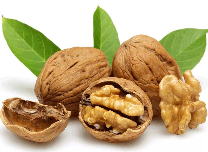 грецкий орех полезные свойства и противопоказания