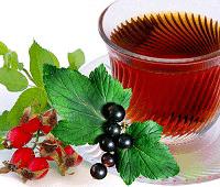 черная смородина полезные свойства чая