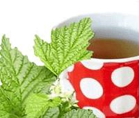 костяника полезные свойства чая
