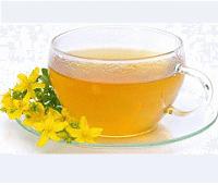 зверобой трава полезные свойства чая