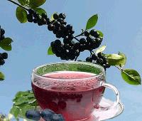 чай из черноплодки