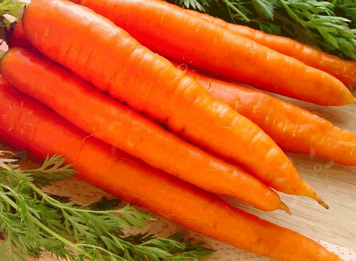 полезные свойства морковки
