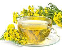 чай из пижмы