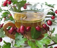 боярышник полезные свойства и применение для чая