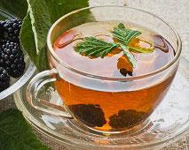ежевика полезные свойства чая