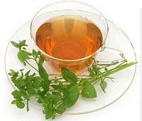 мокрица полезные свойства чая